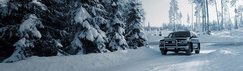 verificare de iarna